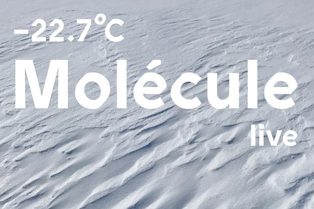 MOLECULE -22.7 C LIVE